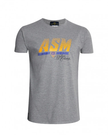 Tee-shirt GLADIARMY ASM gris homme